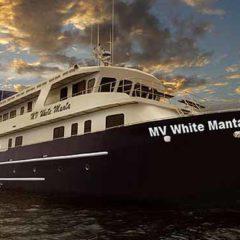 MV White Manta – Liveaboard Phuket