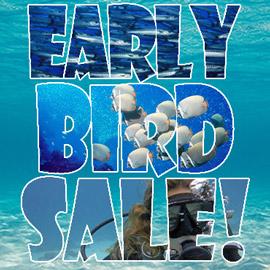Oceanic Early Bird Sale