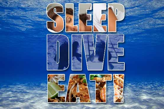 sleep-dive-eat-oceanic-dive-center-main