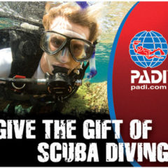 SCUBA Instructor | PADI Courses | SSI Courses | Oceanic