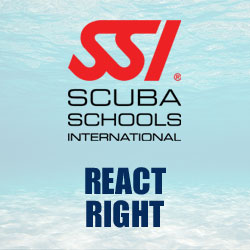 SSI RR REACT RIGHT PHUKET