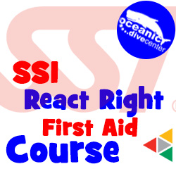 SSI React Right Course Phuket