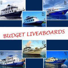 Budget Similans Liveaboard